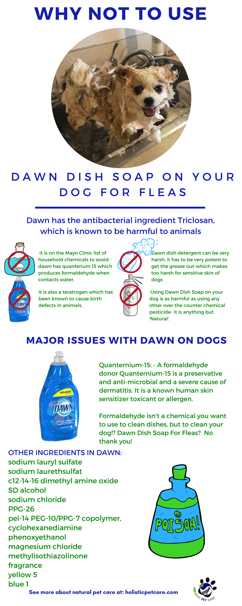 Dawn dish soap for dogs with fleas