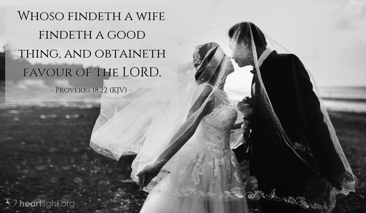 Whosoever findeth a wife kjv